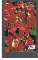 MALESIA  (MALAYSIA) -      FLOWERS: DELONIX REGIA  - USED - RIF. 10365 - Malaysia