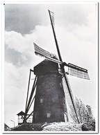 Den Dungen, Molen - Niederlande