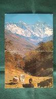 Népal - Le Mont Everest - Nepal