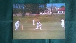 Cricket - Guernesey - Cricket