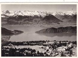 AUSSICHT VOM RIGI-ROTSTOCK AUF KALTBAD (dil353) - Suisse