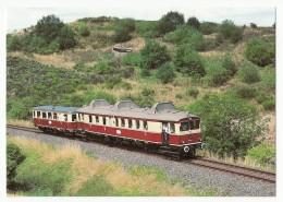 BHEF - Diesel-Triebwagen VT 175 U. Beiwagen VB 140 255 Am 17.8.1986 Bei Schalkenmehren/Eifel - Trains