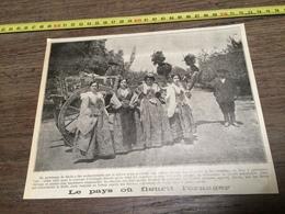 AN 20/30 SICILE PAYS OU FLEURIT L ORANGER CHARRETTE SICILIENNE Carretto Siciliano - Collections
