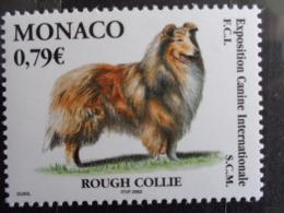 MONACO 2003 Y&T  N° 2388 ** - EXPOSITION CANINE INTERNATIONALE, ROUGH COLLIE - Monaco