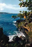 1 AK Insel Reunion * Landschaft Im Süden Der Insel - Übersee-Departement Von Frankreich - Insel Indischer Ozean * - Reunión