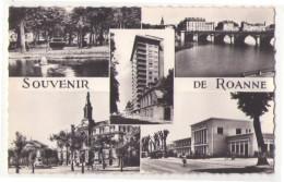 (42) 050, Roanne, La Cigogne 42 187 76, Un Souvenir - Roanne