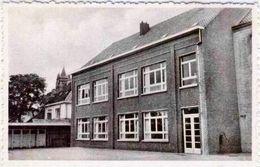 SINT-LENAARTS - Nieuwe Klaslokalen  1952 - Brecht