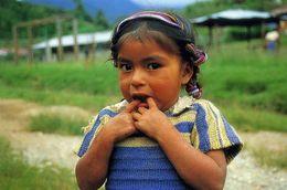AMERIQUE  / GUATEMALA      /  L29    /      /      CPM / CPSM  10 X 15 - Guatemala