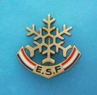 1 BROCHE //   ** BROCHE ** ESF / ÉCOLE DU SKI FRANÇAIS ** UN FLOCON ** . (Decat Paris) - Winter Sports