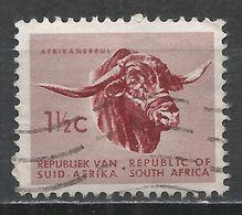 South Africa 1961. Scott #256 (U) Animal, Afrikander Bull * - Afrique Du Sud (1961-...)
