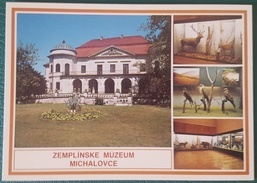 ZEMPLINSKE MUZEUM MICHALOVCE SLOVAKIA Slovensko Animals - Slowakei