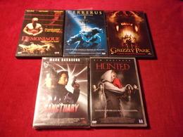 LOT DE 5 DVD   POUR 10 EUROS ( Lot 223 ) - DVDs