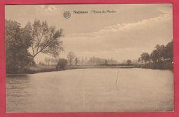 Nalinnes- L'Etang Du Moulin - 1932 ( Voir Verso ) - Ham-sur-Heure-Nalinnes