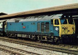 Railway Postcard BR Class 50 50010 Monarch Diesel Loco - Trains