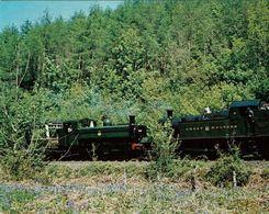 Railway Postcard GWR 45xx 4555 16xx 1638 Staverton Dart Valley Loco Judges - Trains