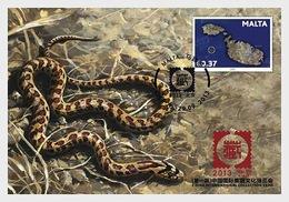 Malta 2013 Maxi Cards - China Expo 2013 - Malta