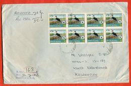 Nepal 2003. WWF. Bird. Registered Envelope Passed The Mail. Airmail. - Iraq