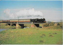 Railway Postcard LNER B1 61264 River Great Ouse Ely Thompson 4-6-0 Loco - Trains