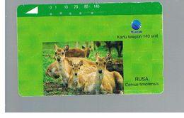 INDONESIA - TELKOM  - ANIMALS: CERVUS TIMORENSIS   - USED - RIF. 10380 - Indonesia