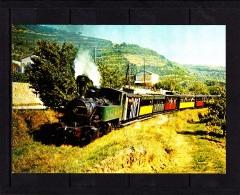 CP Chemin De Fer Du Vivarais, Train Vapeurs Dans Le Mastrou Vers Douce Plage (Ardèche) - Treinen