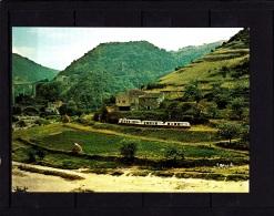 CP Chemin De Fer Du Vivarais, Autorail à Troye, Viaduc Routier (Ardèche) - Trains