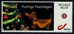 Belgie Belgien 2017 - Teckel Dackel - Hond Hund Dog - Feestdagen - België