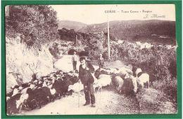 CORSE - Types Corses - Bergers - J. Moretti - - Frankreich