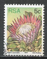 South Africa 1977. Scott #479 (U) Flowers, P. Cynaroides * - Afrique Du Sud (1961-...)