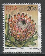 South Africa 1977. Scott #486 (U) Flowers, P. Magnifica * - Afrique Du Sud (1961-...)