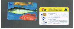 TAILANDIA (THAILAND) -  FISHES  - USED  -  RIF. 10387 - Thailand