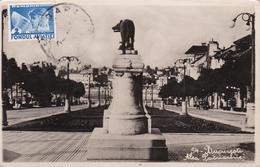 CPA - Roumanie / Romania - Bucureștî - Alea Patriarhiei - Roumanie