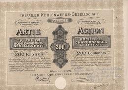 ACTION 200 COURONNES - SOCIETE DES CHARBONNAGES DE TRIFAIL  AUTRICHE - ANNEE 1922 - Mines
