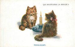 "CHAT - KATZE - CAT -  ""QUI SOUFFLERA LA BOUGIE"" - GOOD NIGHT - édit C. W. FAULKNER - Chats"
