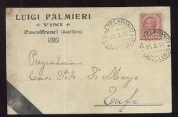CASTELFRANCI - AVELLINO - 1918 - CARTOLINA COMMERCIALE - PALMIERI - VINI - Negozi