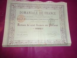 Compagnie DOMANIALE DE FRANCE (1895) Imprimerie RICHARD - Shareholdings