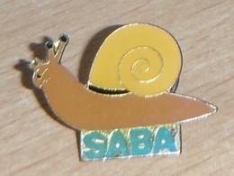 Escargot Saba - Animaux
