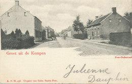 Groet Uit De Kempen - Peer - Oudestraat - 1901 - Peer