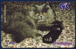 RUSSIA - RUSSIE - RUSSLAND - RUSIA ROSTELECOM PRE-PAID CARD 10.000 UNITS PET GREY CAT PERFECT CONDITION - Russia