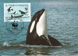 1992 - SAO TOME E PRINCIPE  -    Killer Whale -  Orque - Sao Tome And Principe