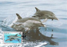 1993  - NIUE Alofi  -  Spotted Dolphin -  Dauphin Douteux - Cartoline