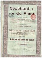 Action Ancienne - Couchant Du Flénu - Titre De 1906 - N° 17450 - Mines