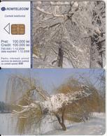 ROMANIA - Forest, 12/04, Sample(no CN) - Romania