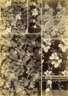 France Photographie Albumine Etoffes Anciennes Par Armand Guerinet Vers 1880 #15 - Photographs