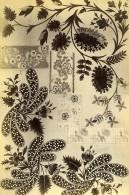 France Photographie Albumine Etoffes Anciennes Par Armand Guerinet Vers 1880 #4 - Photographs