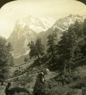 Suisse Jeune Fille Recolte Wetterhorn Ancienne Photo Stereo Stereoscope ASC 1900 - Stereoscopic