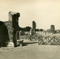 Italie Rome Palatin Palais D'Auguste Ancienne Stereo SIP Photo 1900 - Stereoscopic