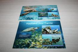 Turtles  2017 Antigua & Barbuda - Maritiem Leven