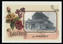 OVERPELT ....gare Souvenir Creation Moderne Serie Limitee - Overpelt