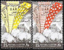 Siria/Syria/Syrie: Festa Del Cotone, Festival De Coton, Cotton Festival - Tessili