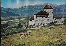 LIECHTENSTEIN - CASTELLO VADUZ - VIAGGIATA 1984 FRANCOBOLLO ASPORTATO - Liechtenstein